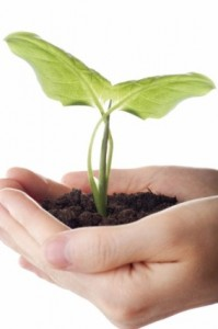 holding_the_picture_of_plant_seedling_169093
