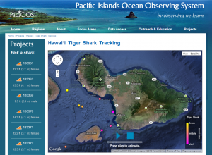 Map of Maui with shark tracking data