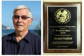 Hadfield awarded the M. Patricia Morse Award for Excellence and Innovation in Science Education