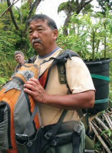 Carrying Cyanea plant