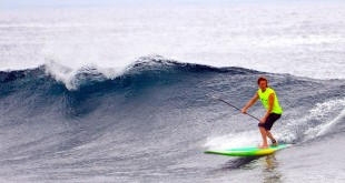 hilo-surfing-research