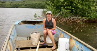 Camilla Tognacchini's field work captured the effects of human activities and tropical storms on the ecosystem of Heʻeia fishpond. Credit: Conor Jerolmon, UH Mānoa