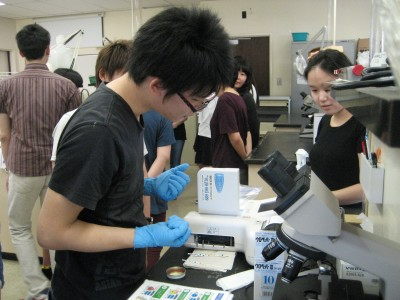 Niigata students, with a Hawai`i student, doing chemical testing on urine samples, in the Medical Technology lab at UH Mānoa.